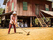 27 FEBRUARY 2015 - PONHEA LEU, KANDAL, CAMBODIA: A woman spreads rice in front of her home to dry it in the sun in Kandal province, Cambodia.    PHOTO BY JACK KURTZ