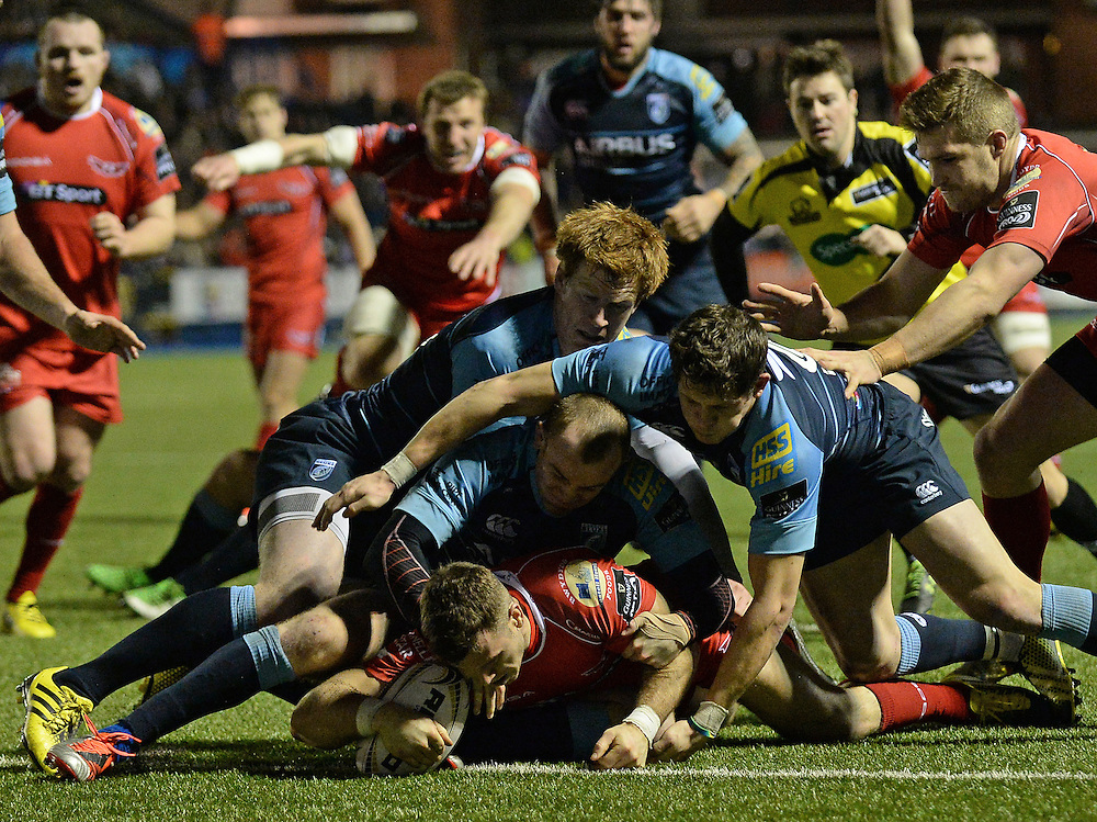 Scarlets' Gareth Davies scores his sides third try<br /> <br /> Photographer Ian Cook/CameraSport<br /> <br /> Rugby Union - Guinness PRO12 Round 11 - Cardiff Blues v Scarlets - Friday 1st January 2016 - BT Sport Cardiff Arms Park - Cardiff<br /> <br /> © CameraSport - 43 Linden Ave. Countesthorpe. Leicester. England. LE8 5PG - Tel: +44 (0) 116 277 4147 - admin@camerasport.com - www.camerasport.com