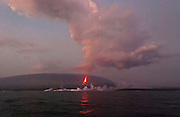April 21, 2009: La Cumbre volcano erupts lava into the Pacific Ocean creating steam clouds and expanding Fernandina (Narborough) Island, in the Galápagos Islands, a province of Ecuador, South America. This eruption cycle started April 10, 2009 after 5 years of quiet. Fernandina Island was named in honor of King Ferdinand II of Aragon, who sponsored the voyage of Columbus. Fernandina is the youngest and westernmost island of the Galápagos archipelago, and has a maximum altitude of 1,494 metres (4,902 feet). Tourists are allowed to visit Punta Espinosa, a narrow stretch of land where hundreds of Marine Iguanas gather largely on black lava rocks. The Flightless Cormorant, Galápagos Penguins, Pelicans and Sea Lions are abundant on this island of lava flows and Mangrove Forests. The volcanic Galápagos Islands (officially Archipiélago de Colón, otherwise called Islas de Colón, Islas Galápagos, or Enchanted Islands) are distributed along the equator in the Pacific Ocean 972 km west of continental Ecuador, South America. In 1959, Ecuador declared 97% of the land area of the Galápagos Islands to be Galápagos National Park, which UNESCO registered as a World Heritage Site in 1978. Ecuador created the Galápagos Marine Reserve in 1998, which UNESCO appended in 2001.