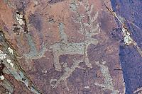 Mongolie, province de Bayan-Ulgii, région de l'ouest, Parc national de Tavan Bogd, site des petroglyphes dans les montagnes de l'Altai Mongol représentant un Tsaatan ou éleveur des rennes  // Mongolia, Bayan-Ulgii province, western Mongolia, National Parc of tavan Bogd, petroglyphes in the Mongolian Altai mountains depicting a Tsaatan or an reindeer herder