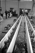 04/06/1964<br /> 06/04/1964<br /> 04 June 1964<br /> Anodising Ltd. Reception for opening of the new factory at Finglas, Dublin. Anodising the electrochemical means of building an aluminium oxide film on aluminium to render the surface harder and abrasion resistant, to increase corrosion resistance, allow the permanent colouring of aluminium and to preserve the appearance.  At the reception hosted by the German-Irish firm  three of the directors view one of the huge processing tanks in the new factory.  (l-r): Mr P.H. Greer, Chairman; Mr Werner Wetzki, Managing Director and Mr Gordon Pearson, Diector.