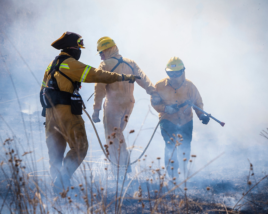 Attacking the head fire during the prescribed prairie burn.