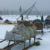 As a Komi reindeer herding clan prepares to move, Maria Terenteva and her son Piotr Terentev dissassemble the poles off their  chum (tepee). Piece by piece, everything will be loaded onto reindeer-driven sleds and driven across the tundra north of the Arctic Circle in Russia.