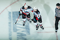 KELOWNA, BC - JANUARY 24: Mark Liwiski #9 and Conner McDonald #7 of the Kelowna Rockets celebrate a goal against the Seattle Thunderbirds at Prospera Place on January 24, 2020 in Kelowna, Canada. (Photo by Marissa Baecker/Shoot the Breeze)