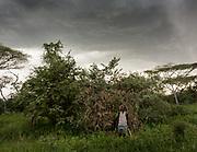 Mokoa. Hadza preparing and hunting stork from a blind. At and near the Hadza camp of Mahiya.