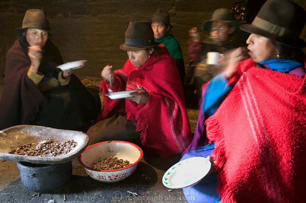 In the afternoon, after the women work in the fields in Tingo, Ecaudor, Ermelinda Ayme's sisters often come to visit. The women gossip, and nurse their babies, snacking on small potatoes and corn that has been parched and roasted. Hungry Planet: What the World Eats (p. 115).