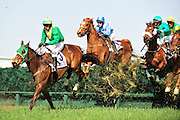 27 March 2010 : William Dowling and TAX RULING lead the rest of the field over an early hurdle in the Gr II Carolina Cup.