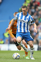Football - 2012 / 2013 Championship - Brighton and Hove Albion vs. Wolverhampton Wanderers<br /> Brighton's Andrew Crofts in action at The American Express Community Stadium