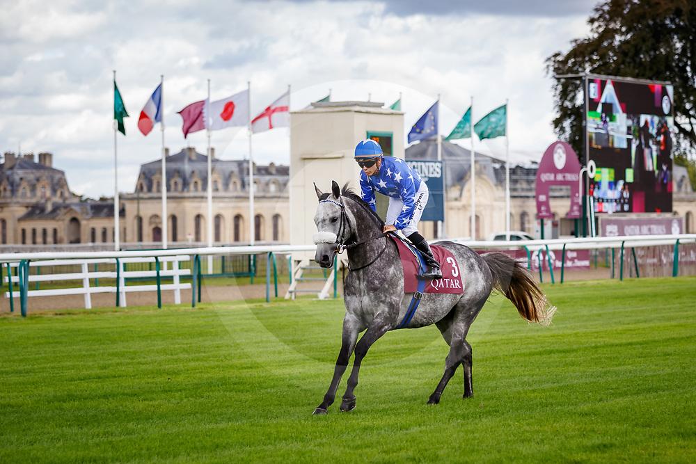 Gazwan (M. Guyon) in Chantilly, France 10/09/02017, photo: Zuzanna Lupa