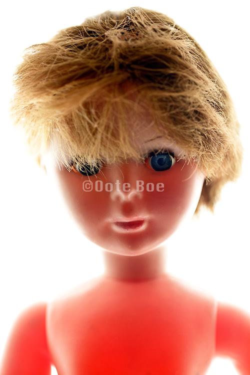 portrait fashionable male doll