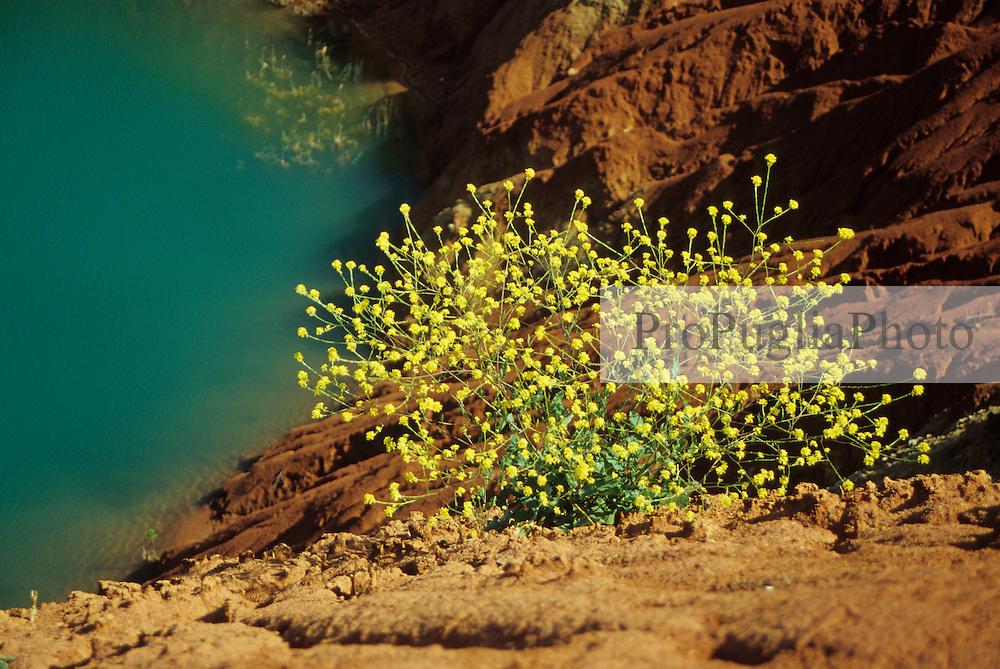 """Green bauxite lake"" near Otranto"