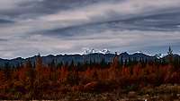 Mount Denali from the Alaska Railroad Train. Image taken with a Nikon D3x camera and 45 mm f/2.8 PC-E lens (ISO 100, 45 mm, f/5, 1/2000 sec).