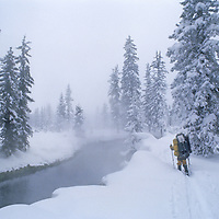 BACKCOUNTRY SKIING. Tom Wells beside hot-spring- warmed Bechler River, Yellowstone National Park, Wyoming. (MR)