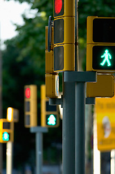 Traffic lights green figure crossing pedestrian