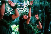 Hula dancer, Hawaii