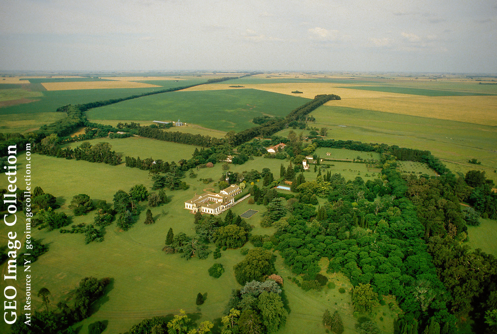 Aerial view of a large plantation and adjoining fields.