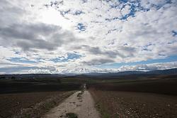 Campagna tra le collinne dei Monti Dauni nei pressi tra Biccari e Monte Cornacchia (Foggia)<br /> Il Subappennino Dauno (noto anche con i toponimi Monti Dauni o Monti della Daunia, la mundàgne o u Appenníne in foggiano) è una catena montuosa che costituisce il prolungamento orientale dell'Appennino sannita. Essa occupa la parte occidentale della Capitanata e corre lungo il confine della Puglia con il Molise e la Campania.