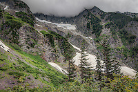 Standing snow in the North Cascades on a chilly August late afternoon at the tree line, where thick forest opens into subalpine meadow. In most of Washington's mountain ranges, standing snow is common year-round.