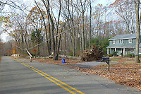 Post Hurricane Sandy. Image taken with a Leica V-Lux 30 camera