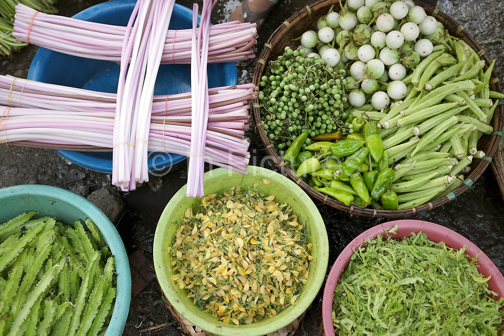 Vegetables including lotus stems, pea aubergines; green chillies and okra for sale at Phsar Kandal morning market in Phnom Penh, the capital city of Cambodia. A large variety of local products are available for sale in fresh markets all over Cambodia, all being sold on small individual stalls.