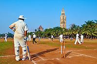 Inde, Maharashtra, Mumbai (Bombay), partie de cricket sur le Maidan // India, Maharashtra, Mumbai (Bombay), cricket party on the Maidan