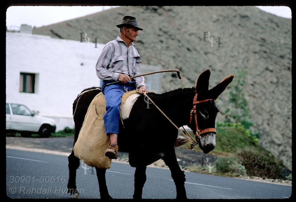 Man rides atop burro along road in town of Tinajo, Lanzarote; Canary Islands. Spain