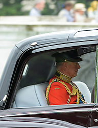 © Licensed to London News Pictures. 14/06/2014. London, UK Prince Charles Prince of Wales,Trooping the Colour, Buckingham Palace, London UK, 14 June 2014. Photo credit : Mike Webster/PIQ/LNP
