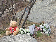 A suicide memorial in a nature park