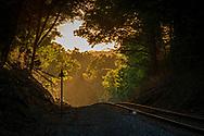 NYSW, New Jersey, Railroad, SU99, Sunset, Susie Q, New York, Susquehanna & Western, Railway, Track, Longing, Tree Tunnel,