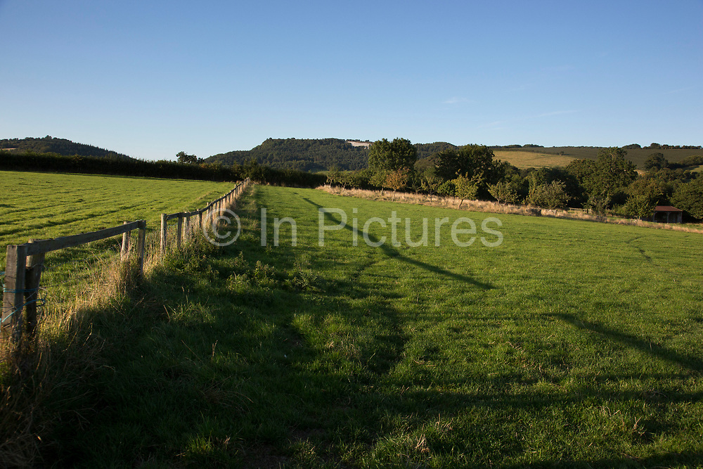 Fields in clean evening light over farmland at Kilburn in The Hambleton Hills on the edge of the North York Moors. Yorkshire, England, UK. This is a farming area where rural living and the countryside is at the centre of life in this county.