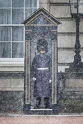© Licensed to London News Pictures. 26/02/2018. London, UK. A member of the 1st Battalion Irish Guards is almost hidden in a snow shower as he stands on duty at Buckingham Palace as a cold front sweeps in from the east - with heavy snow expected later in parts of the UK. Photo credit: Peter Macdiarmid/LNP