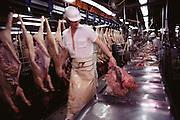 Pigs/Swine/Hog: Oscar Mayer Company slaughterhouse in Perry, Iowa. USA.