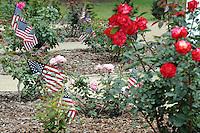 Flags at the World War II Memorial Rose Garden in Salinas, re-dedicated just last year.