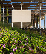 PAMM with architecture landscape by ArquitectonicaGeo