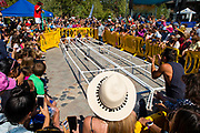 Crowds gather at the annual Chihuahua dog races, Fourth of July, Mammoth Lakes, California, USA.