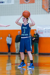 27 December 2014:  Peoria Notre Dame Irish v Champaign Centennial Chargers Girls AA  State Farm Holiday Classic Coed Basketball Tournament (Girls Class AA - Large Schools) at Normal Community High School, Normal IL Day 2