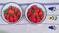 Indoor Hydroponic Strawberry Harvest. Image taken with a Leica TL-2 Camera and 23 mm f/2 lens (ISO 800, 23 mm, f/8, 1/60 sec).