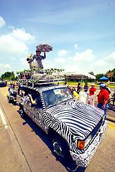 Stock photo of a zebra themed car