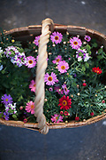 A basket with flowers prepared for the easter celebration.