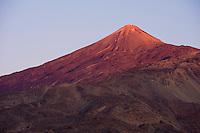 The Teide volcano (the highest mountain of Spain, 3.718 m), at sunset from Montaña Samara. Teide National Park, Tenerife Island, Canary Islands, Spain.