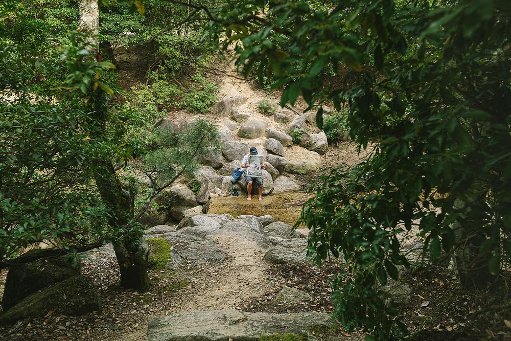 A man reads a newspaper in Okumomijidani Park on Itsukushima Island (Miyajima), Hiroshima prefecture, Japan.