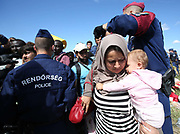 A woman migrant and her baby break through a police corden to board a bus close to the Hungarian and Serbian border town of Roszke, Hungary, September 7 2015. The UN's humanitarian agencies are on the verge of bankruptcy and unable to meet the basic needs of millions of people because of the size of the refugee crisis in the Middle East, Africa and Europe, senior figures within the UN have told the media.