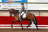 Horsefood Dressuur Talent