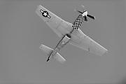 "Thunder over Georgia Airshow. P51 Mustang ""Bum Steer"""
