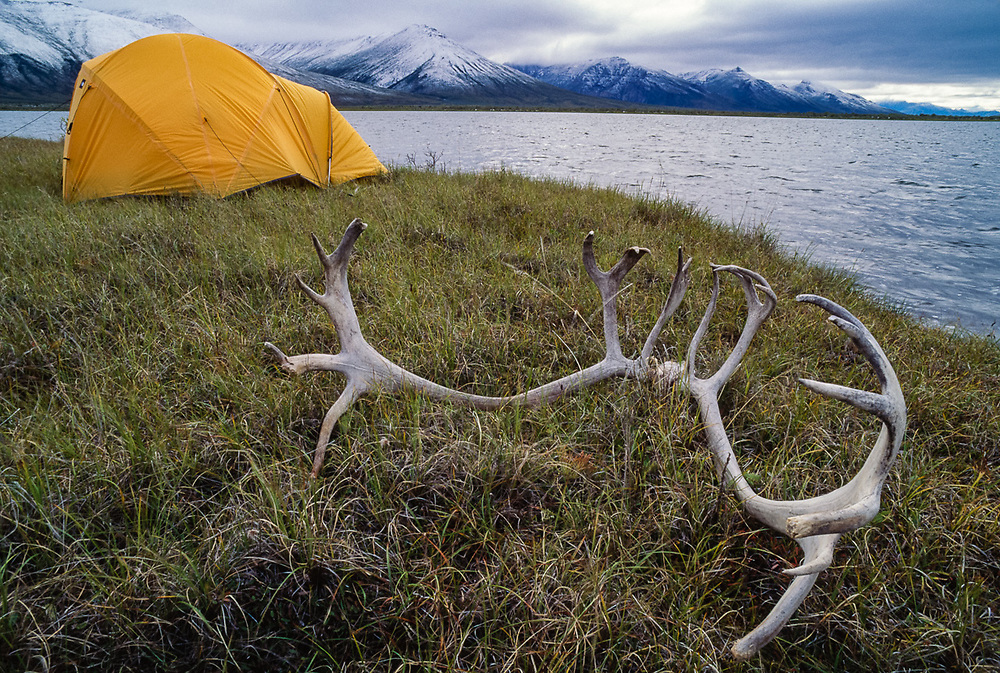 Wilderness campsite at Pingo Lake, Noatak River Valley, Gates of the Arctic National Park, AK, USA