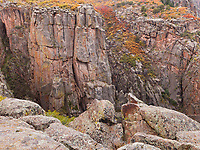 https://Duncan.co/vegetation-on-the-cliffs-at-black-canyon-of-the-gunnison-national-park