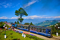 Inde, Bengale Occidental, Darjeeling, le célebre toy train du Darjeeling Himalayan Railway au Batasia Loop, Patrimoine Mondial de l'Unesco // India, West Bengal, Darjeeling, the toy train from Darjeeling Himalayan Railway at Batasia Loop, Unesco world Heritage