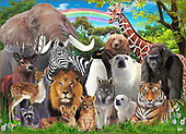 ZZ Art for jig saw puzzles
