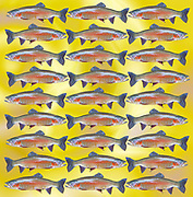 pattern of 27 trout fish in a repeating pattern on yellow background