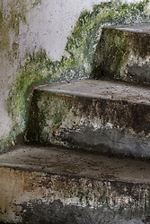 Stairway and mold at Battery Russell, Fort Stevens State Park, Oregon, USA.